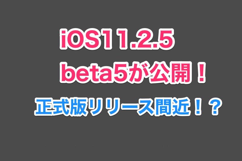 iOS11.2.5 beta5がbeta4から2日で早くも公開!iOS11.2.5正式版リリース間近か?
